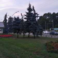 Фото с камеры Sony Xperia M4 Aqua