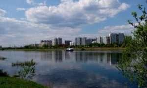 Фото на телефон Леново А536
