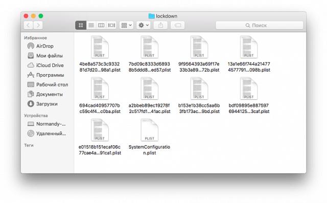 Очистить содержимое специального системного каталога Lockdown