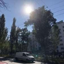 iPhone 8 пример фото