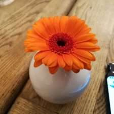Huawei Honor 7X пример фото