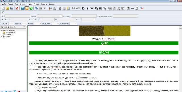 FictionBook Editor